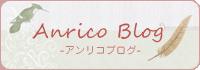 Anrico Blog